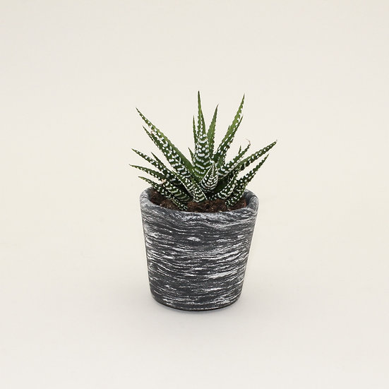 Black Marble Small Plant Pot