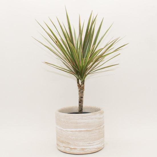 Beige Marble Large Plant Pot