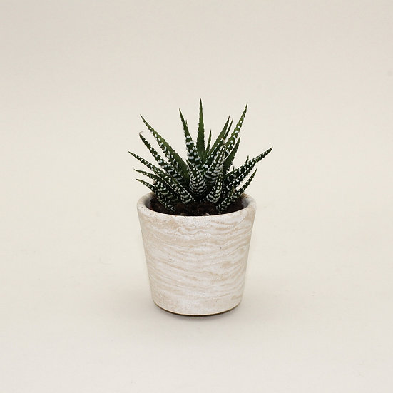 Beige Marble Small Plant Pot