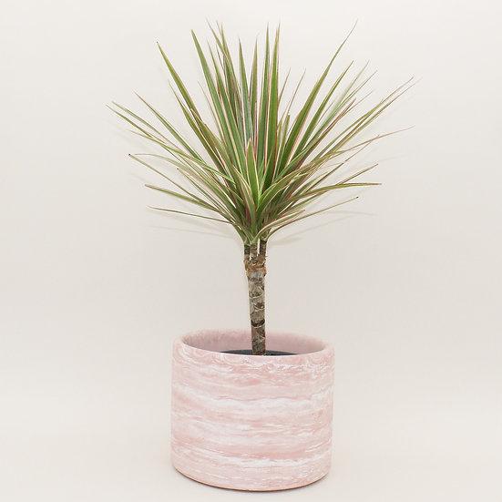 Pink Marble Large Plant Pot