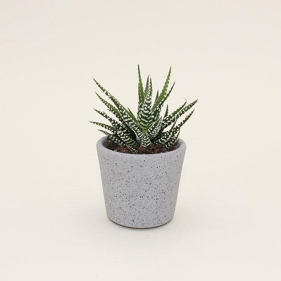 Grey Granite Small Plant Pot