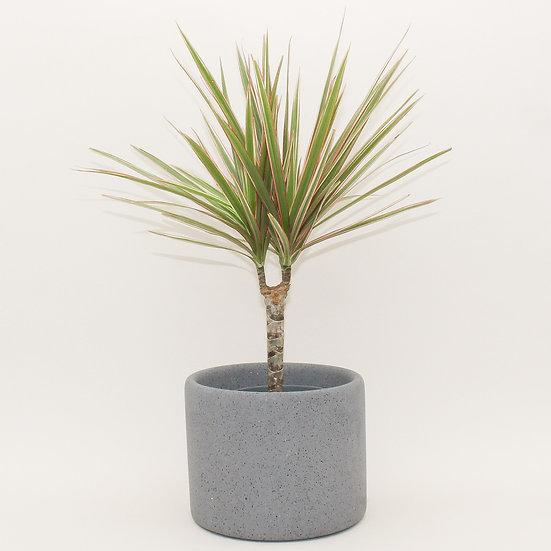 Grey Granite Large Plant Pot