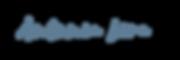 Logo Antonia Lira letras.png