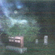 ghosttaylor3 copy_edited.jpg