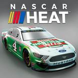 NASCAR Icon