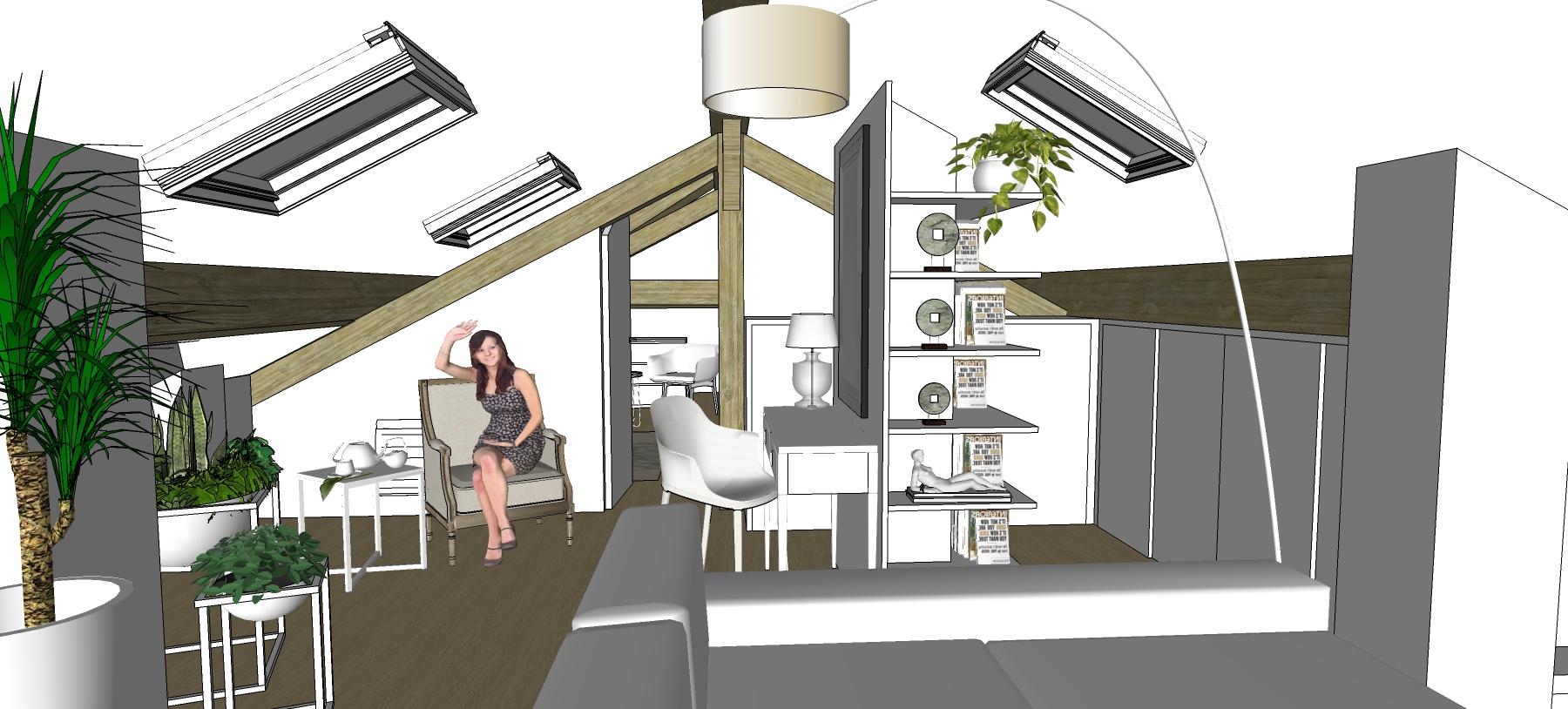 Le petit salon et L'espace bureau - bibliothèque - rangements