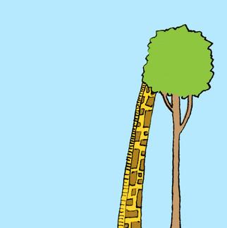 giraffe shy v2.jpg