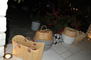 L'été grec chez ONEIPA