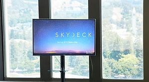 SkyDeck_SDD_2018_3545 1-X4.jpg