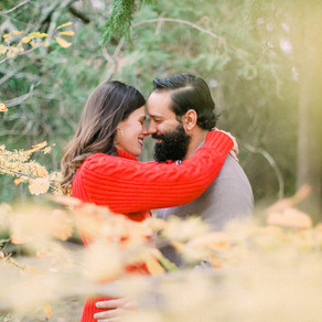 Grace + Tom's State Arboretum of Virginia Engagement Session