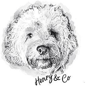Henry & Co Logo