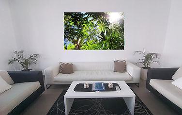 Bob lounge 2 web.jpg