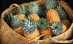 Pineapples_2598 web.jpg