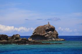 Fiji Warrior_9305.jpg