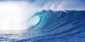 Bob wave_5531 3.jpg