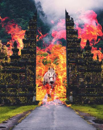 Horse-fire-Bali-1.jpg