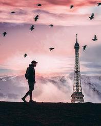 Effiel-tower-birds-cliff.jpg