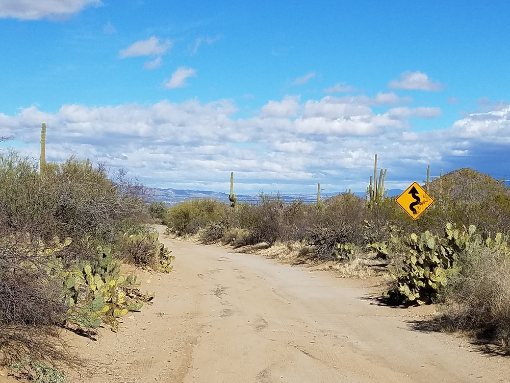 Oooooooooo... This road looks like fun!