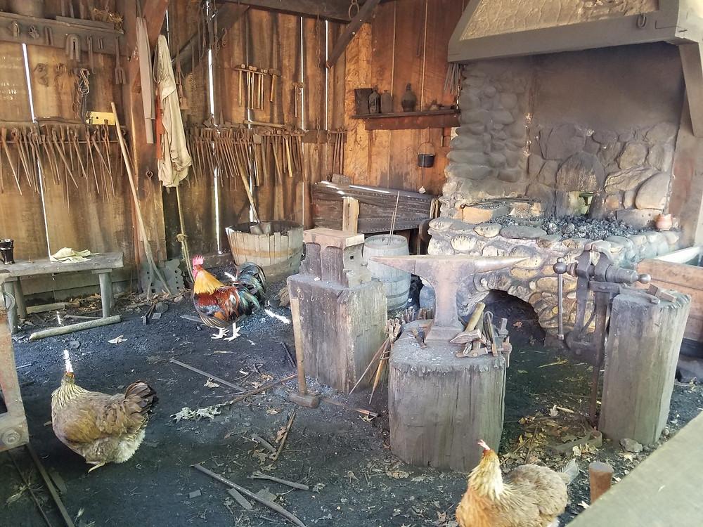 Chicken blacksmiths