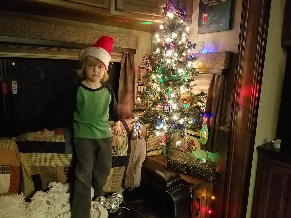 Our New Christmas Tree!