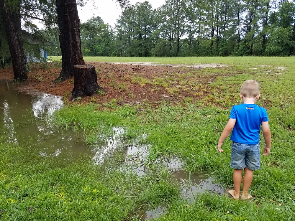 Some quality puddle jumping after the rain storms