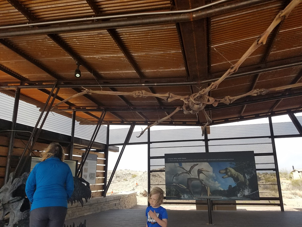 Learning about Dinosaurs in Big Bend NP