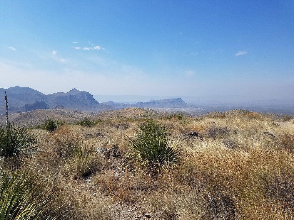 The View from Sotol Vista