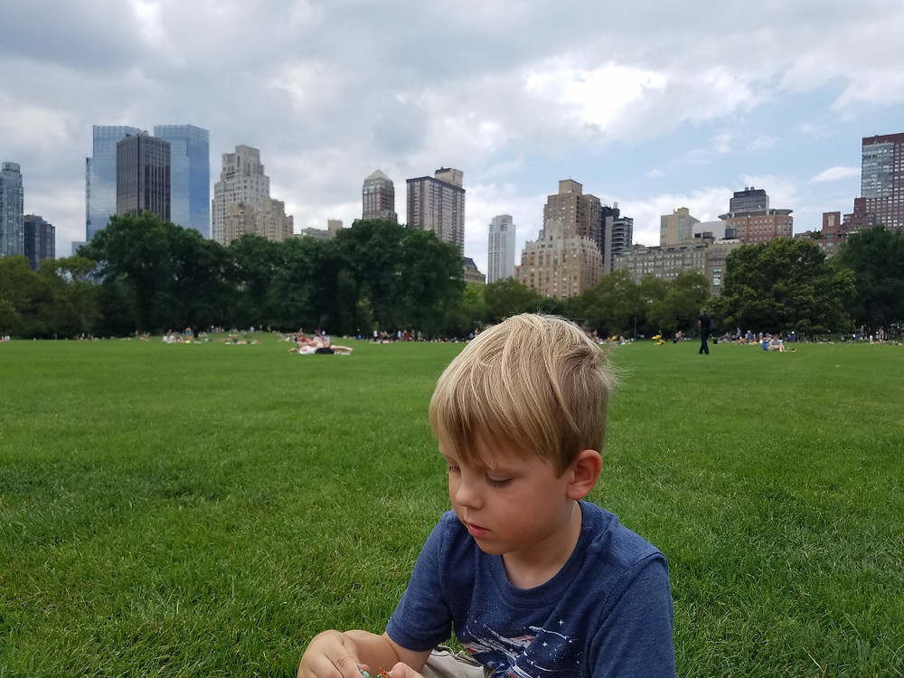 Enjoying the view of the skyline from Central Park