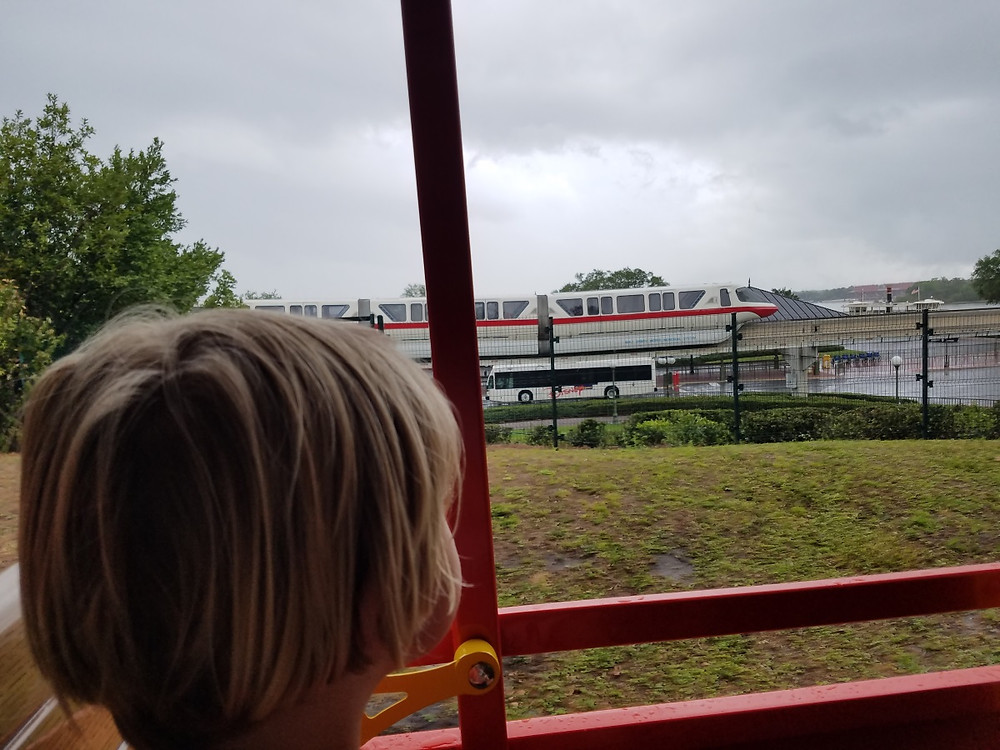 Watching the monorail from the steam train!