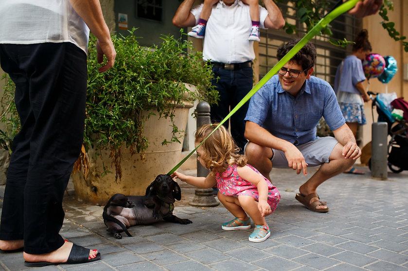 ילדה מלטפת כלב
