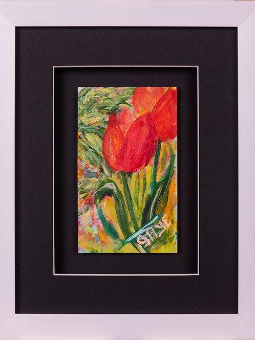 Miniature Tulips3