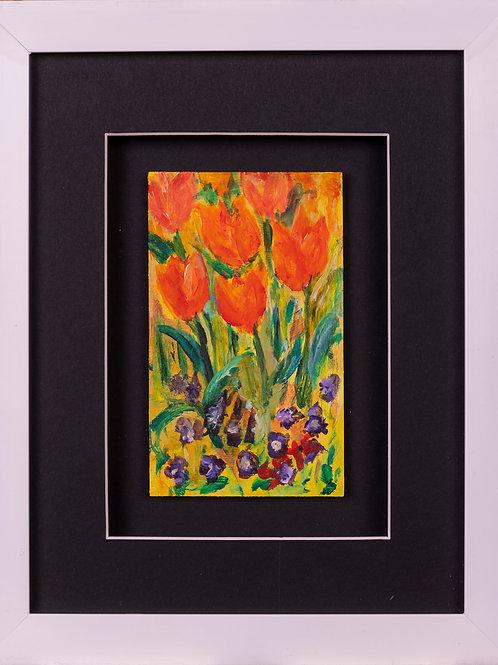 Miniature Tulips4