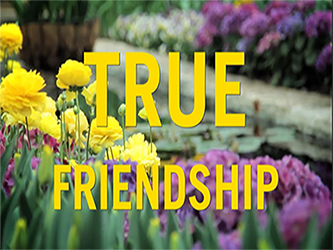 True Friendship website.png