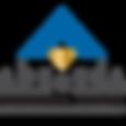 Revizija, Revizijske storitve, Revidiranje računovodskih izkazov, Revizijska družba