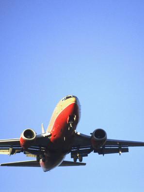 Flights & Bookings