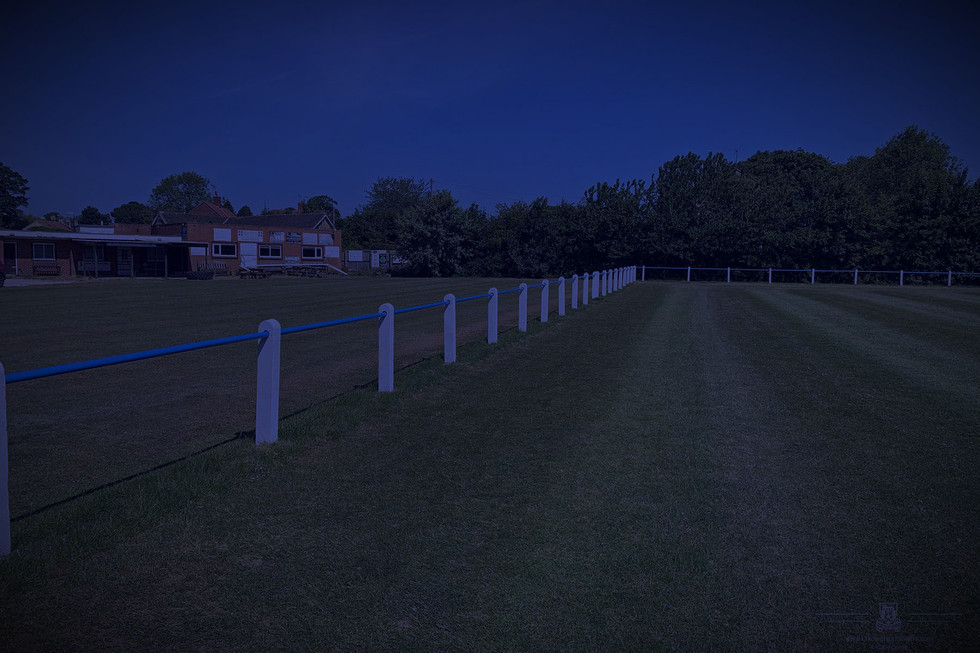 Fences2_edited v2.jpg