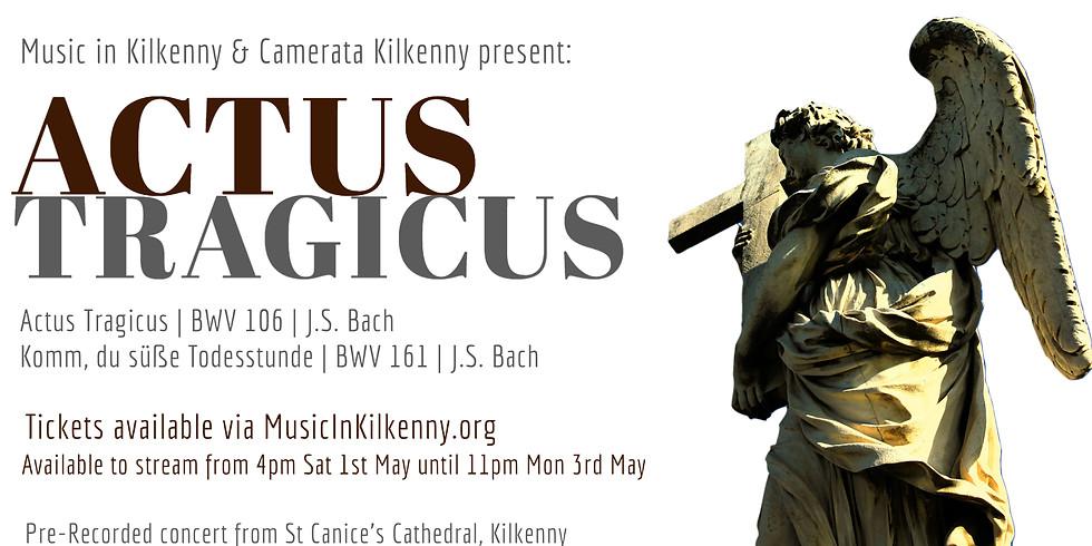 Camerata Kilkenny   Actus Tragicus   BWV 106 & 161 J.S. Bach