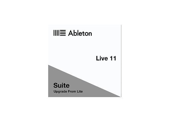 Ableton Live 11 Suite actualizable desde el software Lite