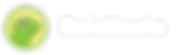 CoinGecko-WhiteText (1).png