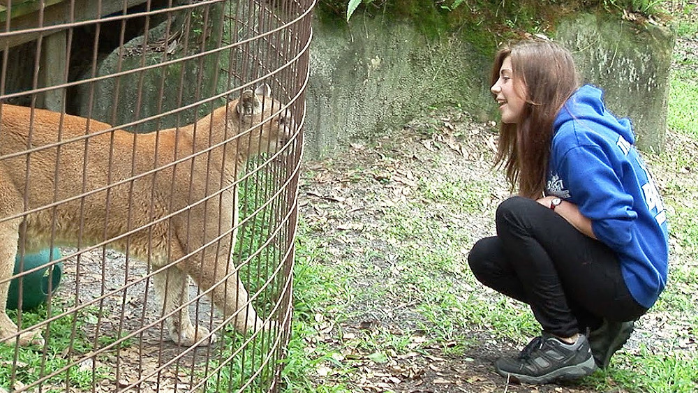 Captive wildlife interacting with woman.