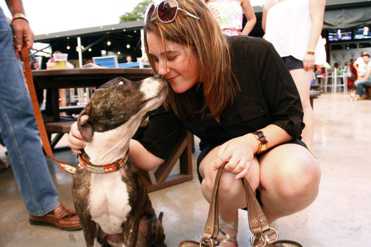 Cabela, the dog that was abused, kisses a woman.