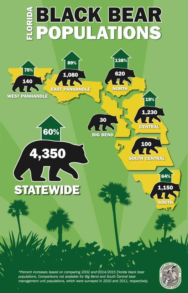 Black Bear Populations in Florida.  Courtesy of MyFWC.com