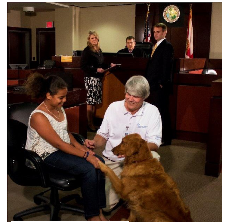 Rikki in the courtroom.  This photo appeared on the cover of The Florida Bar Journal, Vol. 88, No. 9 (Nov. 2014).