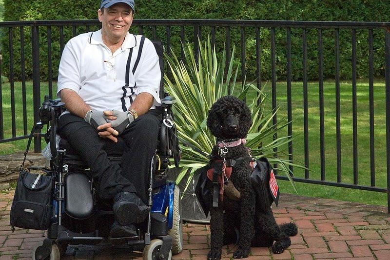 Livy, a black standard poodle, sits with her owner Bruce Hicks.