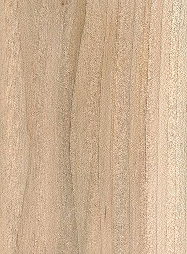 red-maple-2.jpg