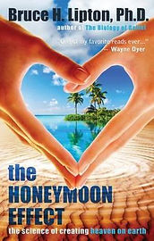 the-honeymoon-effect.jpg