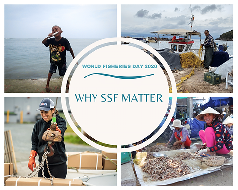 Joint OFI Module I & TBTI World Fisheries Day Celebrations Highlight the Importance of Small-Scale Fisheries in NL and Elsewhere