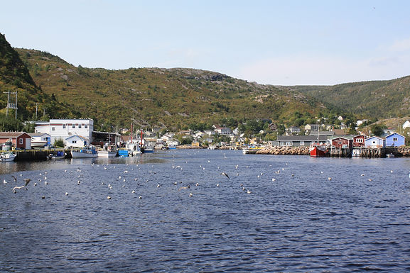 Contribute to OFI Research on Recruitment, Training & Retention in Small-Scale Fisheries in Newfoundland