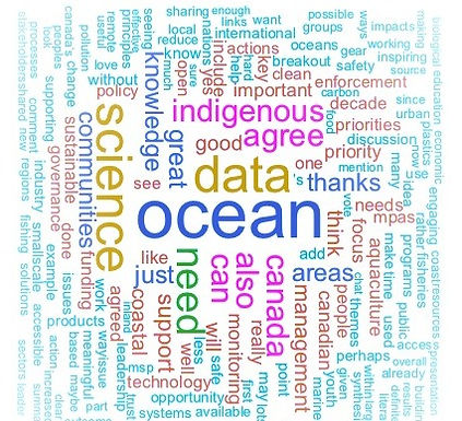 Highlights from Canada's UN Ocean Science Decade workshop