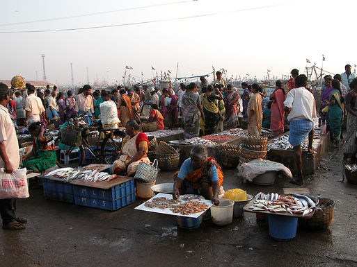 Anchored Boats: India's Lockdown and the Small-Scale Fisheries